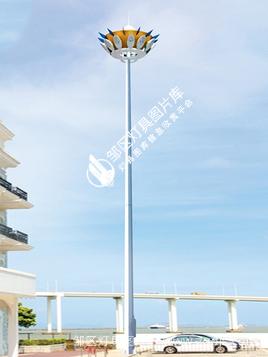 高中杆灯-00259