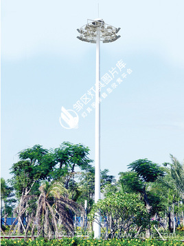 高中杆灯-00252